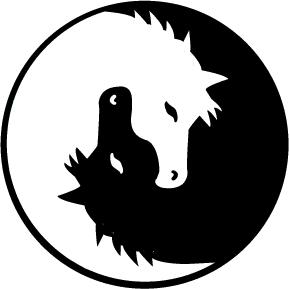yin yang chess