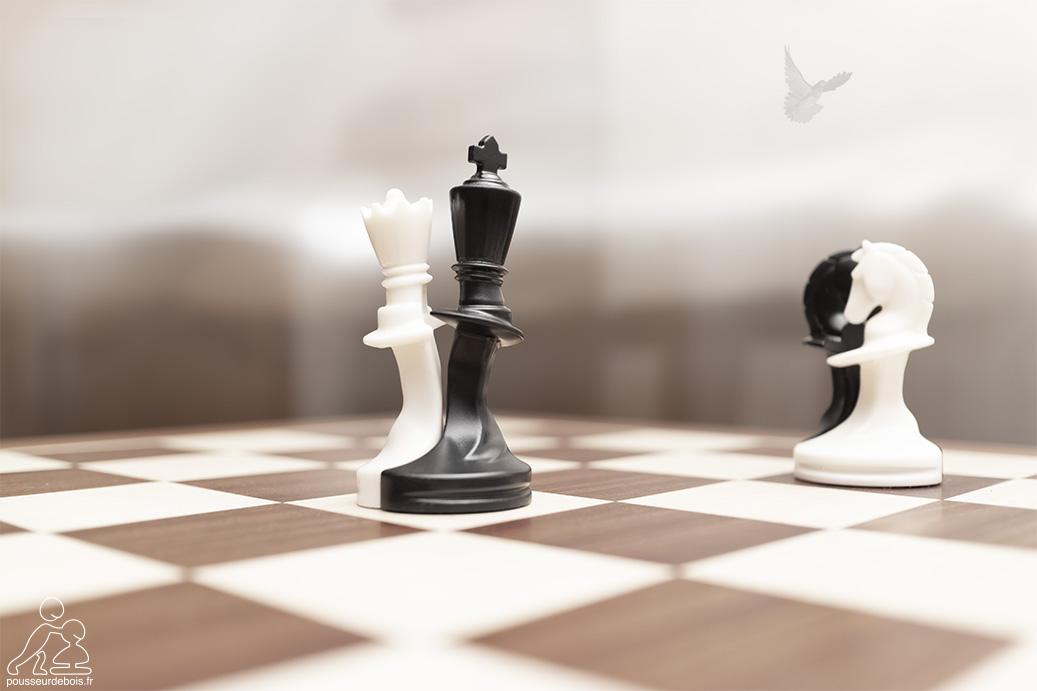 Paco Sako : Le jeu d'échecs de la paix